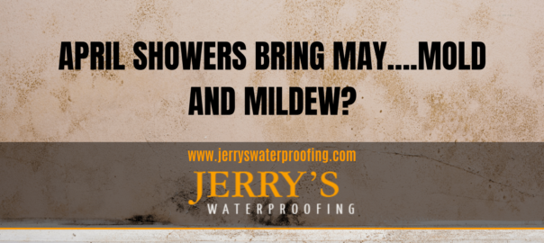 crawlspace: April Showers Bring May….Mold and Mildew?